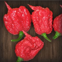 As of August, Guinness World Records stated that Smokin' Ed's Carolina Reaper is officially the world's hottest chile pepper. Tabasco Pepper, Paprika Pepper, Stuffed Sweet Peppers, Stuffed Jalapeno Peppers, Como Plantar Pitaya, Capsicum Chinense, Chile, Capsicum Annuum, Hot Sauce Recipes