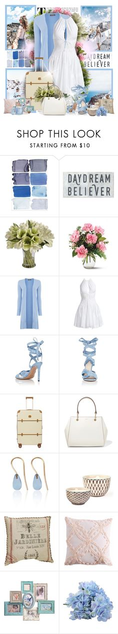 """White & Blue Travel"" by sheavschaaf ❤ liked on Polyvore featuring Jane Seymour Botanicals, Alaïa, Altuzarra, Bric's, DKNY, Love Is, Bambeco, Peri and D.L. & Co."