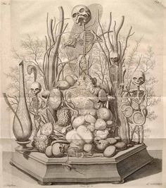 """Alle de ontleed- genees- en heelkindige werken...van Fredrik Ruysch... vol. 3    Amsterdam, 1744. Etching with engraving. National Library of Medicine.    Frederik Ruysch  (1638-1731)  [anatomist]    Ruysch's """"repository of curiosities"""" included displays of infant and fetal skeletons, placed in landscapes of human and animal body parts. This ghastly musicale is notable for its morbid whimsy."""