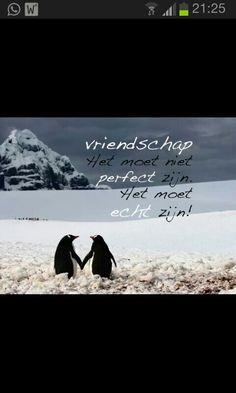 Vriendschap.......................................lbxxx.