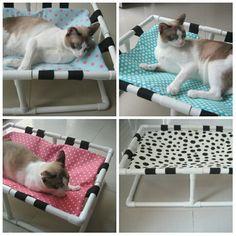 Diy Cat Enclosure, Reptile Enclosure, Hiding Cat Litter Box, Diy Cat Bed, Cat Beds, Cat Couch, Pet Hammock, Cat Stands, Cat Room