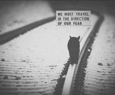 We must travel in the direction of our fear.