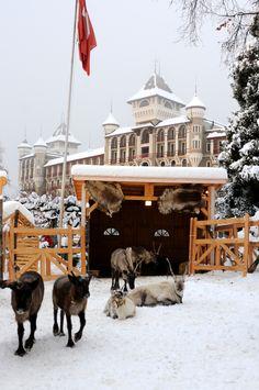 Christmas Village in Caux (Montreux Riviera)