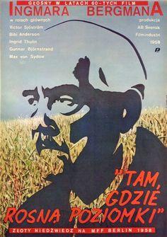 Wild Strawberries Tam gdzie rosna poziomki Skorwider Eugeniusz Polish Poster