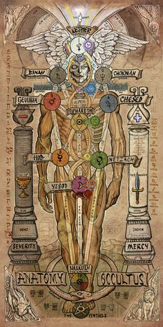 Anatomy Occultus V2: A study of the Tree of Life in its anthropomorphic & Adam Kadmon form by Artist, Chuk Vinson - the joining of the serpent DNA with that of a human.