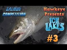 Ice Lakes - Ep. #3 - Salmon Competition! - Ice Fishing Simulator