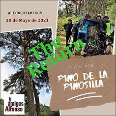 #AlfonsoyAmigos Plants, Paths, Naturaleza, Plant, Planets