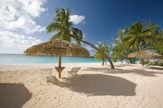 Caribbean Club (Grand Cayman)  Cayman Islands <3 Best Place On Earth