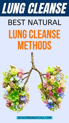 Keeping our lungs clean and clear helps keep the rest of our body healthy as well. A lung cleanse helps give you a stronger connection to your vital life force, oxygen. Read about the best… Lung Detox, Lung Cleanse, Juice Cleanse, Natural Herbs, Natural Health, Relaxation Techniques, Living A Healthy Life, Natural Cleaning Products, Detox Tea
