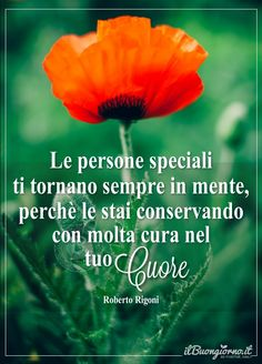 Le persone speciali ti tornano sempre in mente – Frasi da dedicare Bff Quotes, Friendship Quotes, Conservative Quotes, Italian Life, Italian Quotes, Sigmund Freud, Beautiful Words, My Best Friend, Persona