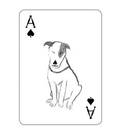 pack-of-dogs-playing-cards-john-littleboy-12