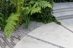 Limestone terrace joins with Vande Moortel clay pavers on this Gold medal winning show garden by Tom Simpson Design Hampton Court Flower Show, Rhs Hampton Court, Landscape Design, Garden Design, Tom Simpson, Clay Pavers, Seasons Of The Year, Green Garden, Design Awards