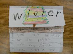 Mrs. T's First Grade Class: Winter Five Senses