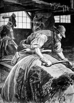 Victorian era tannery