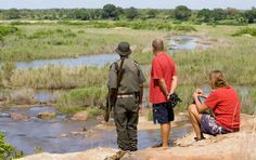 A roundup of the best places in the Kruger National Park to park, sit, watch and enjoy a beautiful view. Kruger National Park, National Parks, Down The River, Bradley Mountain, The Good Place, Wildlife, Camping, Crocodile, Travel Ideas