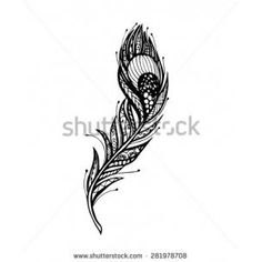 Peacock feathers peacock feather tattoo and feather for Peacock tattoo black and white