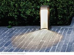 Downlight for a garden path, brick pavers. Exterior Lighting, Outdoor Lighting, Outdoor Lamps, Delta Light, Brick Pavers, Side Door, Landscape Lighting, Pavement, Downlights