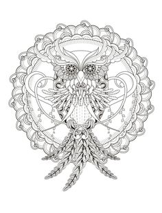 Owl 23 Free Printable Insect Animal Adult Coloring Pages