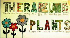 therapeutic plants