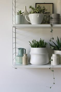 Shelf display in the guest bedroom by Heather Young