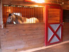 Preparing Mares for Breeding Season in January & February - Putting Mares Under Artificial Lights
