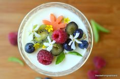 This light Lemon Panna Cotta is the perfect early spring dessert, it's no-bake, super simple, and easy to adjust for dairy free and vegan! Sugar Free Desserts, Great Desserts, Dessert Recipes, Yummy Recipes, Delicious Fruit, Yummy Food, Lemon Panna Cotta, Dessert For Two, Spring Desserts