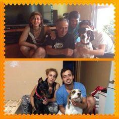 Después de 3 meses casi sin noticias del mundo exterior, SALLY y FRANZ consiguen casas de acogida!!