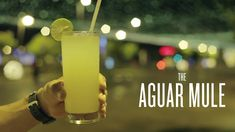 327th Signature Cocktails. AGUARMULE. http://nuevamixologiacolombiana.blogspot.com.co/2017/12/327th-signature-cocktails-aguarmule.html