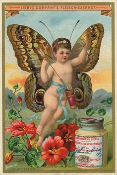 Butterfly Baby trading card issued by Liebig Extract of Beef Company. Vintage Cards, Vintage Paper, Vintage Postcards, Vintage Images, Vintage Prints, Butterfly Girl, Vintage Butterfly, Decoupage, Cherub