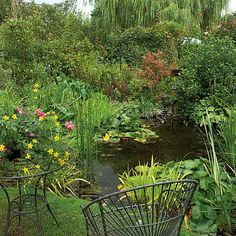 Attract wildlife including frogs and insects by putting in a pond in your garden. It can be done as a diy job if you're willing to dig, and lined with a pond liner or a preformed pond.