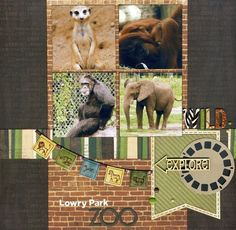 Lowry Park Zoo by StacyLee