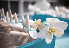When it comes to beach wedding escort cards, I'd advise to be creative. What's beach connected with? Sand, pebbles, shells, star fish and various flowers, so taking it into consideration make escort cards using pebbles, stones...