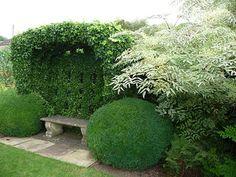 .ψ.Ψψψ.. Bourton House Garden. Nice seat, plus nice juxtaposition of shapes, textures, and colors.
