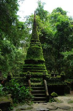 Stupa covered in mosses and Selaginella in forest, Chanthaburi, Thailand