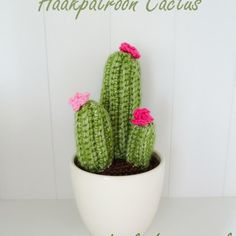 Haakpatroon Cactus Plant