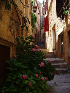 world: Alleyway in old city of Korcula, Croatia (by flexabull). Beautiful World, Beautiful Places, Beautiful Pictures, Amazing Places, Montenegro, Monuments, Places To Travel, Places To See, Korcula Croatia