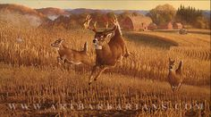 """""""First Round - Whitetail Deer"""" Hunting Pictures, Deer Pictures, Deer Pics, Wildlife Paintings, Wildlife Art, Deer Paintings, Acrylic Paintings, Hunting Art, Hunting Stuff"""