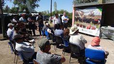 Entrega de toros a productores del oeste, de la Cabaña Experimental de Santa Isabel