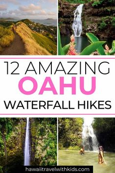 Discover recipes, home ideas, style inspiration and other ideas to try. Oahu Hawaii, Kauai, Hawaii Hikes, Hawaii Honeymoon, Turtle Beach, Pearl Harbor, Oahu Waterfalls, Waimea Falls, Waterfalls
