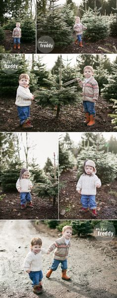 Family photos at a Christmas tree farm! Love this session by Seattle photographer Miss Freddy!