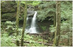 grassy cove tennessee   ... State Park, Crossville TN Real Estate, Crossville TN Places to Visit