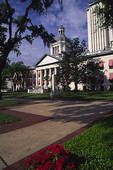 Tallahassee--because Dusty,Lacy and Drake (my little love) live there!