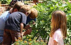 Math in the Gardens Durham, North Carolina  #Kids #Events