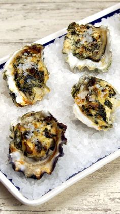 If you love oysters, this creamy, garlicky deliciousness is for you. If you love oysters, this creamy, garlicky deliciousness is for you. Raw Oysters, Fresh Oysters, Shellfish Recipes, Seafood Recipes, Sushi Recipes, Seafood Dinner, Fish And Seafood, Appetizers, Seafood