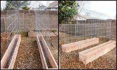 Trellis-and-Raised-Garden-Bed-Combo-Main-Image.jpg (700×420)