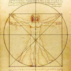 leonardo da vinci human body - Google Search