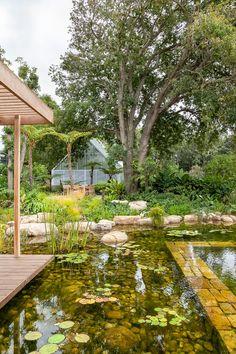 Designer: Carrie Latimer Style: Water Garden Type: Private Garden Area: Cape Town Garden Types, Private Garden, Water Garden, Carrie, South Africa, Water Gardens, Gardens