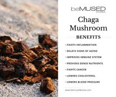Low pH Chaga Cleanser is a mild, low pH cleanser that gives you the gift of clear, beautiful, and glowing skin! Containing Chaga Mushroom Extract and 10 Complex Chaga Tea Benefits, Health Benefits, Holistic Nutrition, Health And Wellness, Gut Health, Mushroom Benefits, Mushroom Tea, Pseudo Science, Natural Health Remedies