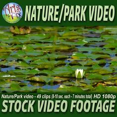 "Arts & Pix offers you this High Definition ""Nature & Park scenes"" Stock VIDEO Footage clip sequence. This 7 min - HD 1080p - 30fps High Definition Stock VIDEO Footage sequence features 49 video clips (8-10 seconds each) of a day at the Park..."