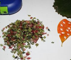 "The PURE Gardener, Inc.: How to Make ""Real"" Miniature Fall Leaves. You use leaves!"